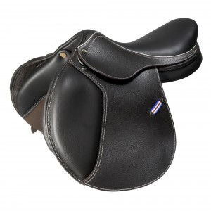 An Introduction to Whitaker Saddles