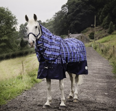 Everything you need to know about horse rugs